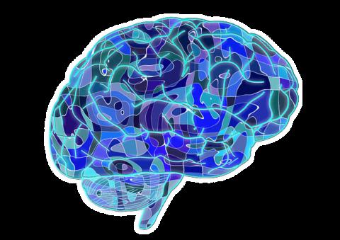 Chronic Traumatic Encephalopathy - Youth Voices