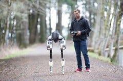 robot photo