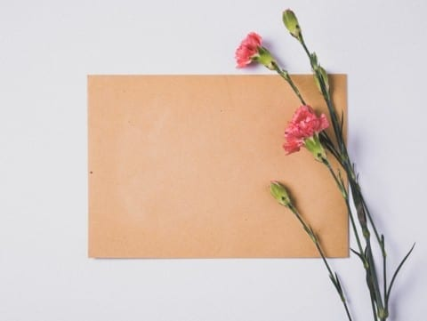 pink and green flower on brown paper