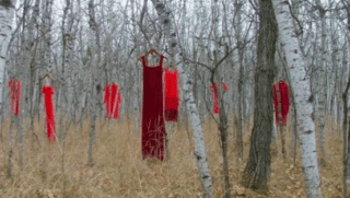 Red dresses show the number of missing Indigenous Women in that Area